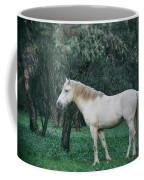 White Stallion In The Woods  Coffee Mug