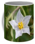 White Star Coffee Mug