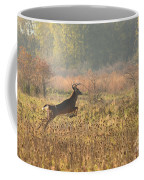 White Tail Morning Coffee Mug