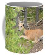 White Tail Coffee Mug