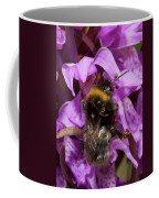 White-tailed Bumblebee On Southern Marsh Orchid Coffee Mug
