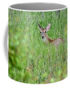 White-tailed Deer Bedded Down In Tall Grass Coffee Mug