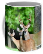 White-tailed Deer Family Coffee Mug