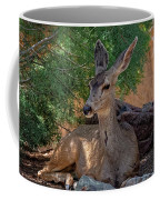 White-tailed Deer H1829 Coffee Mug