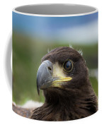 White-tailed Eagle #1 Coffee Mug