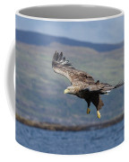 White-tailed Eagle Over Loch Coffee Mug