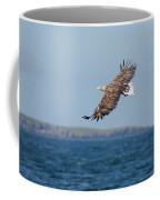 White-tailed Eagle Over The Sea Coffee Mug