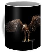 White-tailed Eagle Coffee Mug by Sergey Taran