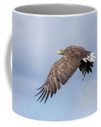 White-tailed Eagle With Lunch Coffee Mug