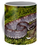 White-tailed Hognose Viper Coffee Mug