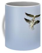 White-tailed Kites Food Exchange Coffee Mug
