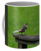 White Tailed Mocking Bird Coffee Mug