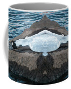 White-throated Dipper Mirrored Coffee Mug