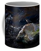 White-throated Dipper Nr 2 Coffee Mug