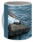 White-throated Dipper Nr 4 Coffee Mug