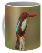 White-throated Kingfisher Coffee Mug