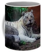 White Tiger Gladys Porter Zoo Texas Coffee Mug