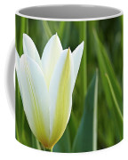 White Tulip Coffee Mug