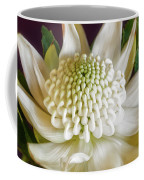 White Waratah Coffee Mug