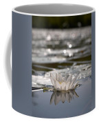 White Waterlily 3 Coffee Mug