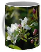White Woodland Crabapple Flowers Coffee Mug