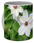 White, Yellow, And Purple Clematis Blossom Coffee Mug