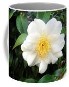 White-yellow Flower. Little Sun Coffee Mug
