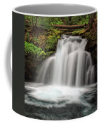 Whitehorse Falls 2 Coffee Mug