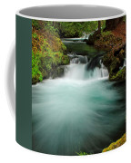 Whitehorse Falls 3 Coffee Mug