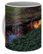 Whiteman College Reflection Coffee Mug