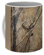 Whitetail Buck Square Coffee Mug