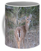 Whitetail Deer II Coffee Mug