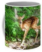 Whitetail Fawn Coffee Mug