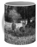Whitetailed Deers Coffee Mug