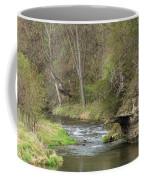 Whitewater River Spring 45 A Coffee Mug