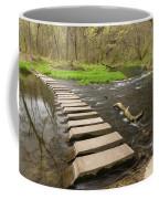 Whitewater River Spring 52 Coffee Mug