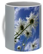 Who Is The Whitest Coffee Mug