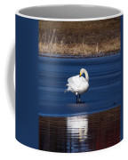Whooper Swan 2 Coffee Mug