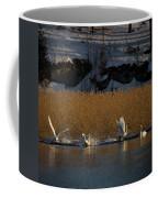 Whooper Swan Nr 12  Coffee Mug