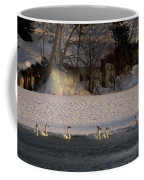 Whooper Swan Nr 14 Coffee Mug