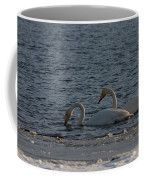 Whooper Swan Nr 2 Coffee Mug