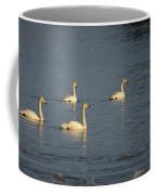 Whooper Swan Nr 8 Coffee Mug