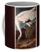 Whooping Crane Coffee Mug by John James Audubon