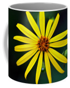 Whorled Rosinweed Coffee Mug