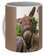 Why The Long Face? Coffee Mug