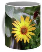 Wide Open In Bloom  Coffee Mug