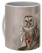 Wild Barred Owl With Prey Coffee Mug