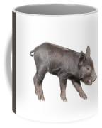 Wild Black Piglet Coffee Mug
