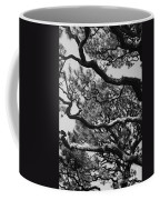 Wild Branches Coffee Mug