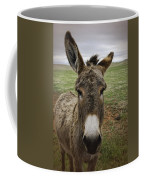 Wild Burro Coffee Mug
